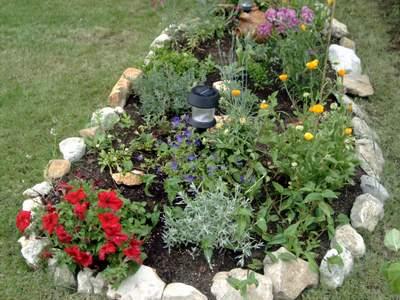 Por qu se ponen circulitos de piedras alrededor de for Decoracion de jardines con arboles frutales