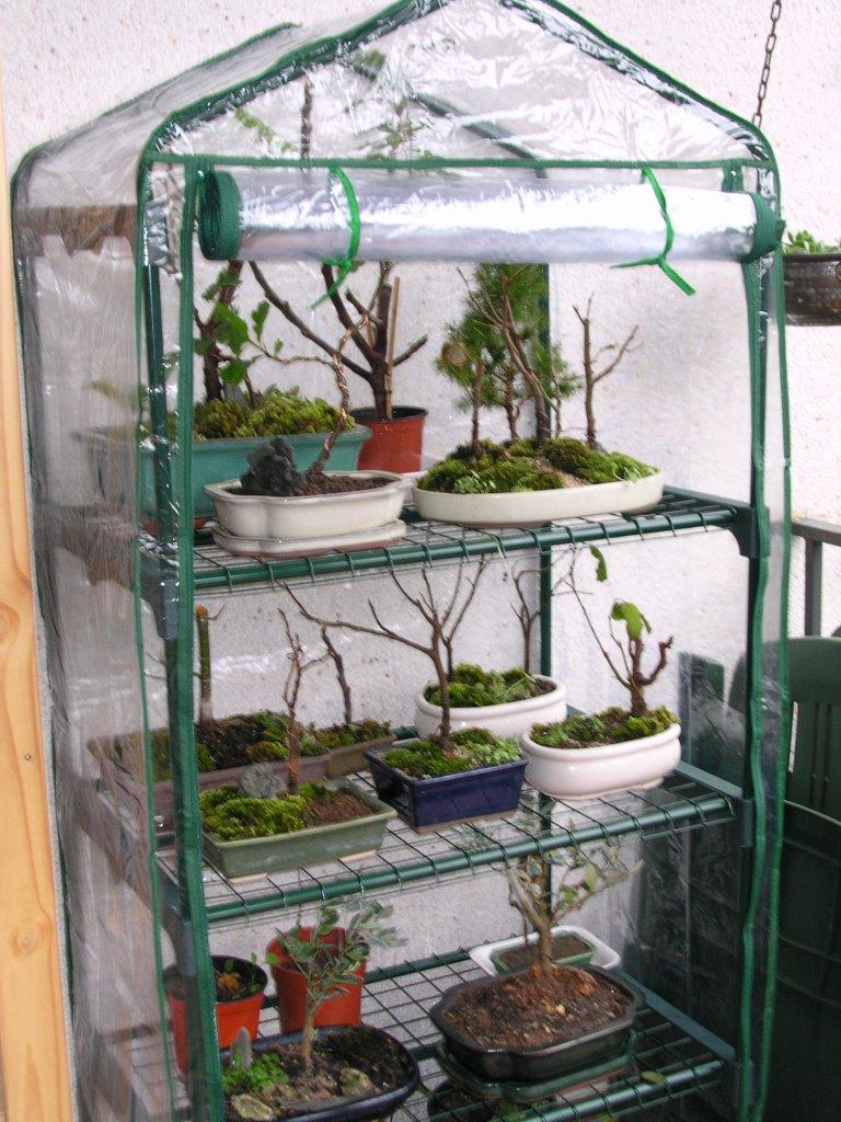 Invernaderos para bons is for Estanterias para bonsais