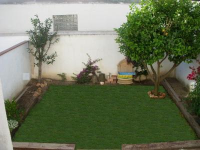 Muros y paredes cubrir tapar o decorar con plantas for Plantas para decorar jardines