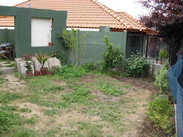 jardin vertical casero jardines verticales caseros aprende a dise arlos y mantenerlos precioso 1 [Foto de planta, jardin, jardineria]