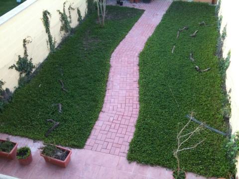 Ejemplos de dise os de jardines peque os for Jardines redondos pequenos