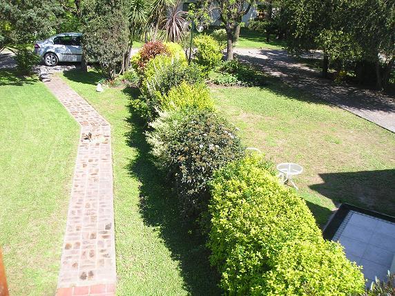 Arbustos para vallas awesome estos arbustos como casi - Plantas para vallas ...