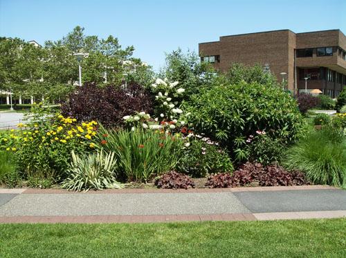 Empresas de dise o de jardines y paisajismo for Empresas de paisajismo