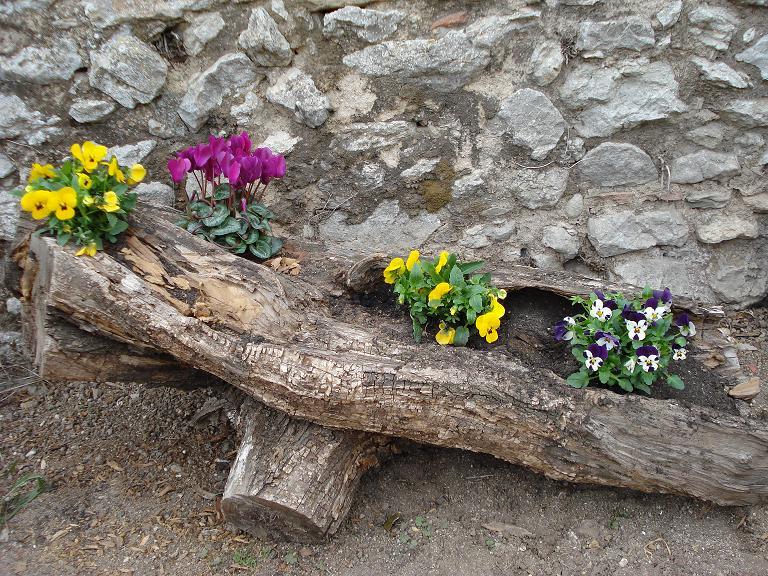 Tronco y rbol seco usos como banco mesa decorativo for Arboles decorativos para jardin