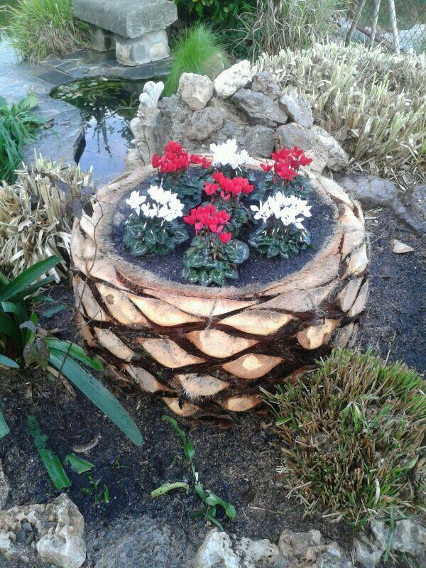 Tronco y rbol seco usos como banco mesa decorativo conservaci n - Como decorar un arbol seco ...