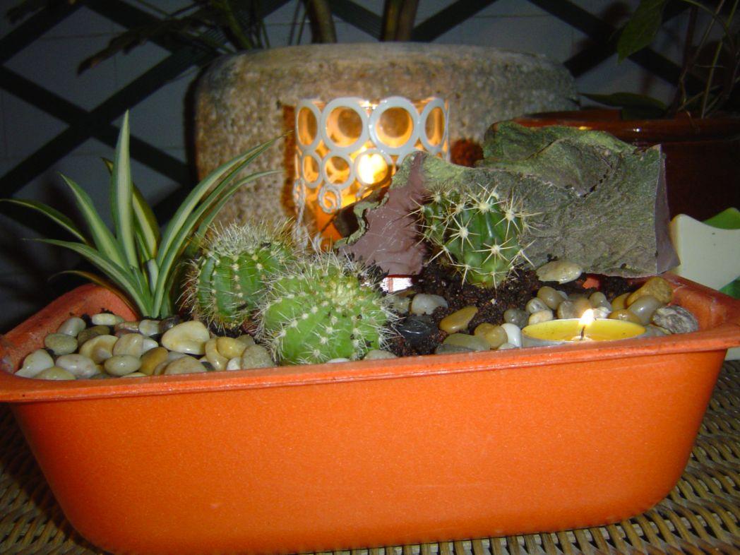 Macetas de objetos reciclados y recipientes originales - Macetas originales para plantas ...