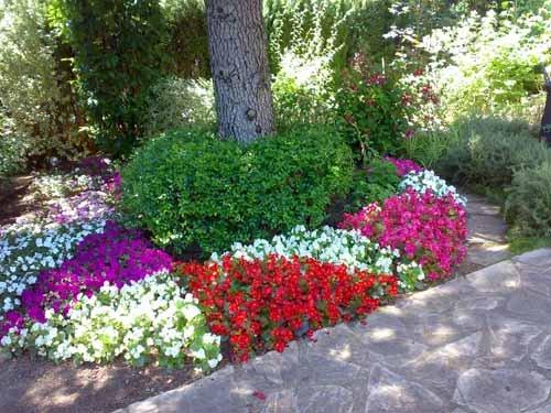 Jardineras decoraci n con plantas for Que plantas poner en una jardinera