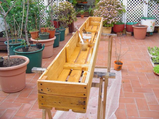 Great [Foto De Planta, Jardin, Jardineria]