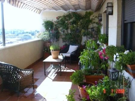 Riego en terrazas balcones y patios sistemas e instalaci n for Patios con plantas