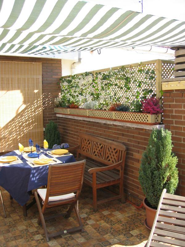 Toldos para terrazas balcones y patios for Ver toldos para patios