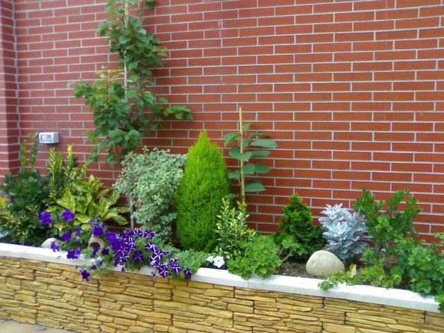 Jardineras en terrazas distribuci n construcci n y for Que plantas poner en una jardinera